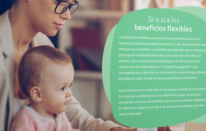 Guía de Beneficios Flexibles